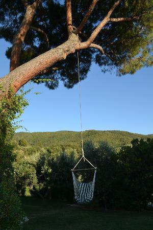 Il Fontanaro: Der große Baum