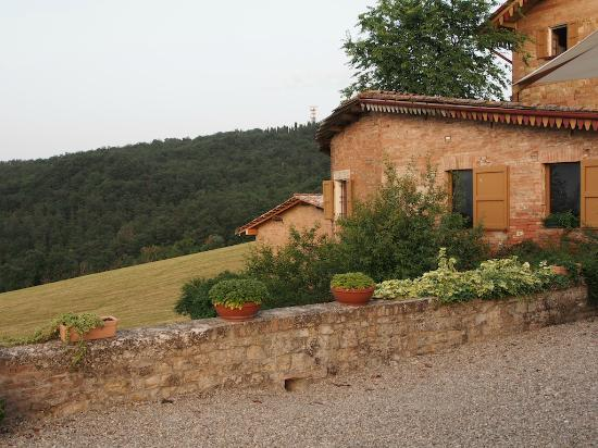 Agriturismo Cavazzone: From dinning terrace