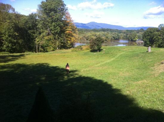 Chateau and Tudor Rooms, Saugerties Bed and Breakfast: View of the grounds