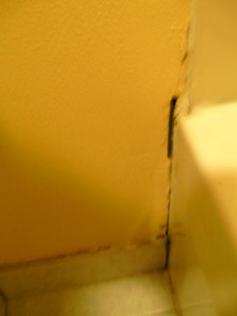 Econo Lodge Inn & Suites: hole in wall left of bathtub
