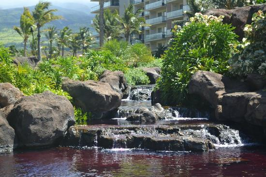Honua Kai Resort & Spa: Honua Kai Pool