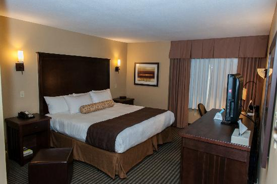 BEST WESTERN Maple Ridge Hotel: King