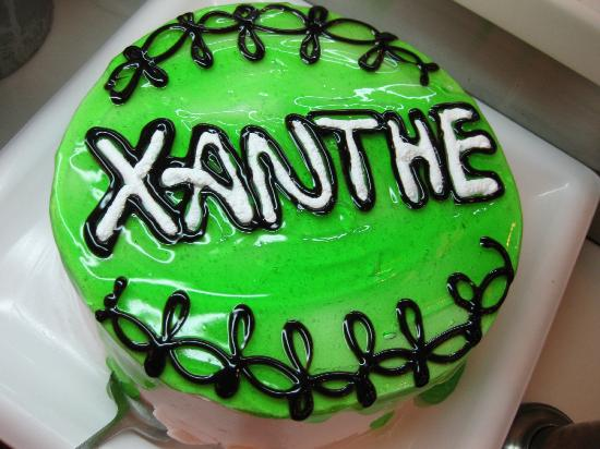 Xanthe Resort: A cake