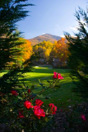 Maggie Valley Club & Resort: Lush landscapes and lovely views!