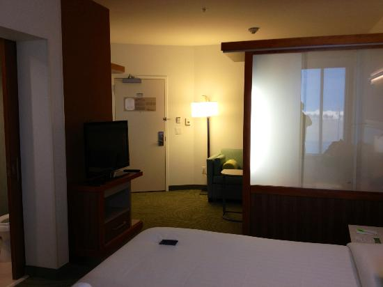 SpringHill Suites Dallas Richardson / Plano : Room