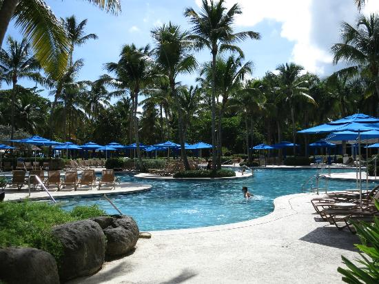 Wyndham Grand Rio Mar Beach Resort & Spa : Pool
