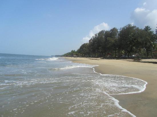 Les 3 Elephants Cherai Beach: Cherai Beach