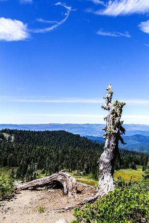 Mt. Elijah: View from Bigelow Lakes Loop trail