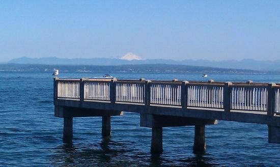 View from outdoor patio Ivar's Mukilteo Landing