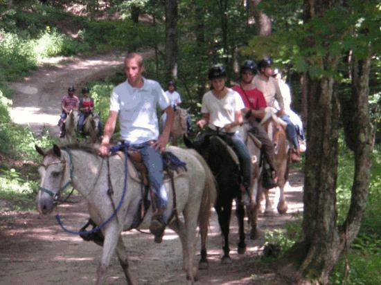 Arrowmont Stables: On One of Many The Trails