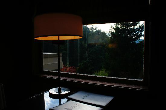 ساليش لودج آند سبا: desk view