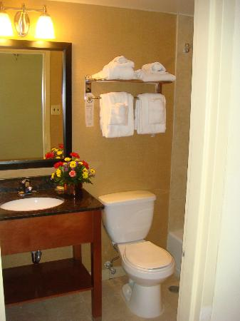 Comfort Inn Riverfront: bathroom
