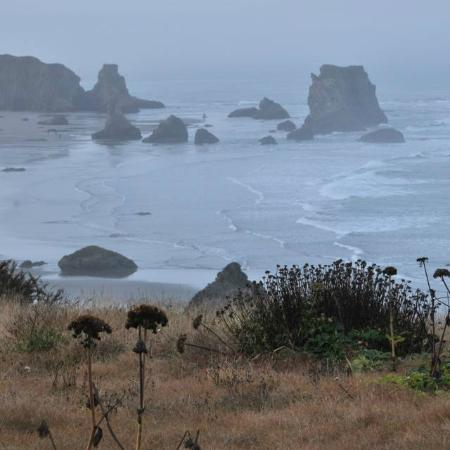 Bandon Beach Motel: View from the Trail