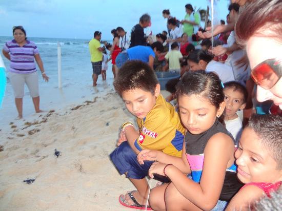 Tortugranja (Turtle Farm): poeple are excited