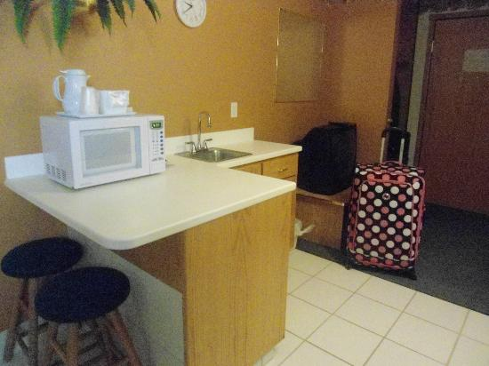Mt. Rushmore's President View Resort: nice kitchen area with mini fridge