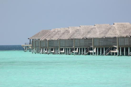 Anantara Kihavah Maldives Villas: Water villas