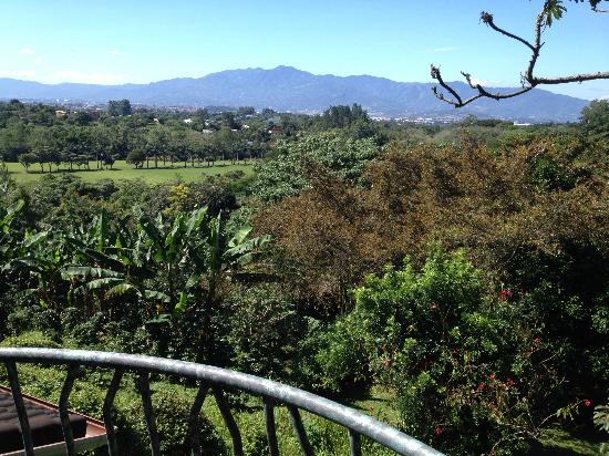 Finca Rosa Blanca Coffee Plantation Resort: View from room terrace!