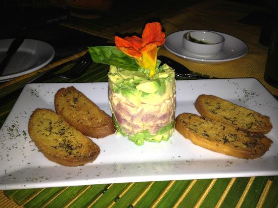 Finca Rosa Blanca Coffee Plantation & Inn : Tuna tartar with avocado!