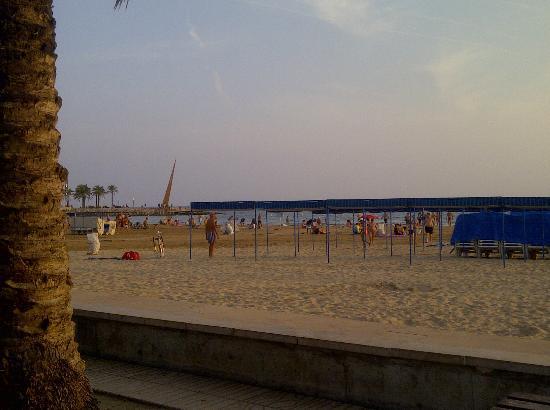 H10 Delfin: beach