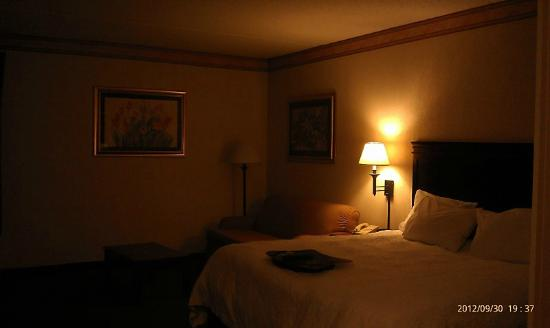 Hampton Inn Manheim: Spacious room