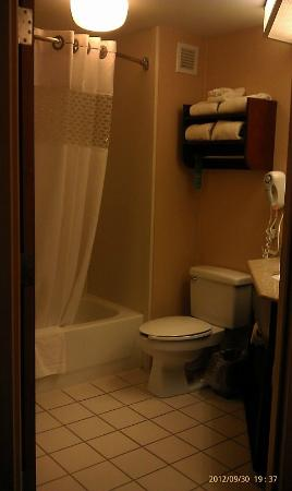 Hampton Inn Manheim: Clean bath