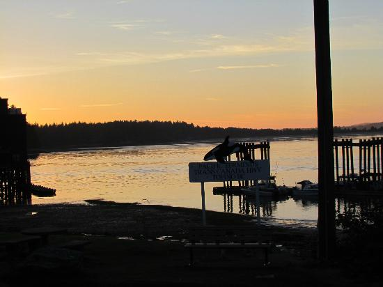 Black Bear Guesthouse: Sunset in Tofino