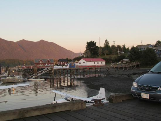 Black Bear Guesthouse: The Tofino marina