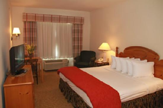 Baymont Inn and Suites, Waunakee: Deluxe Room with 1 King Bed