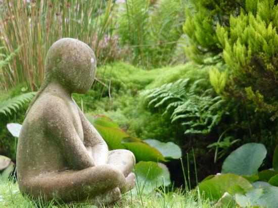 The tranquility of Glenwhan Gardens