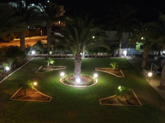 Seagull Apartments: gardens 2