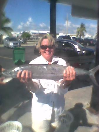 Gulfstream Fishing : Cero mackerel