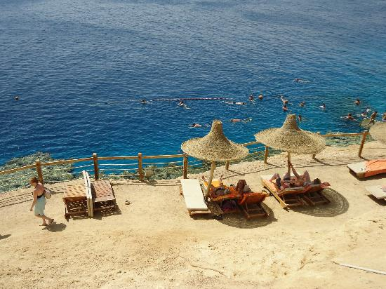 Sharm Plaza Hotel: sea/snorkling