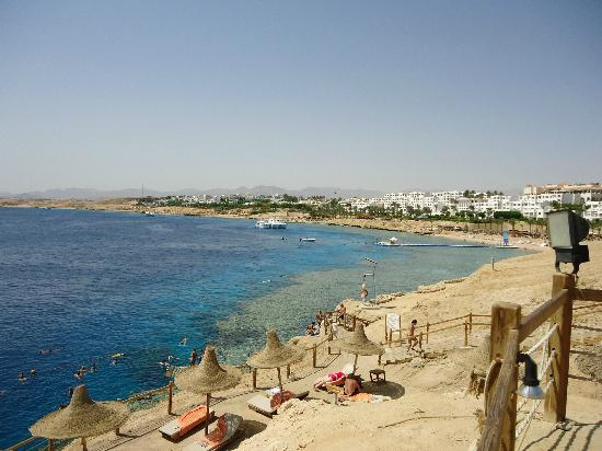 Sharm Plaza Hotel: view