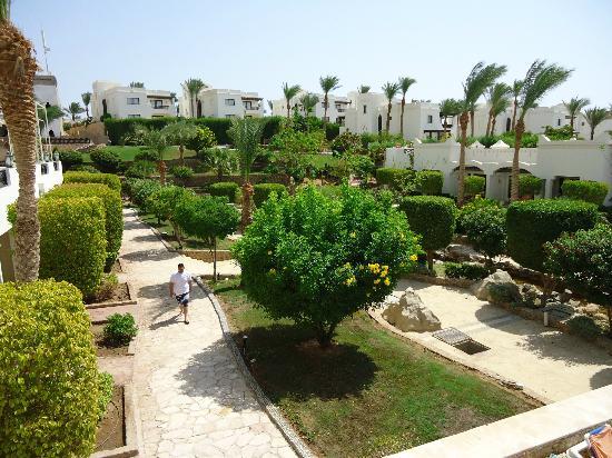 Sharm Plaza Hotel: gardens