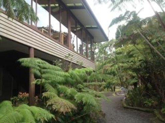 exterior of Volcano Inn
