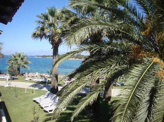Club Tarhan Beach Hotel: view from bedroom