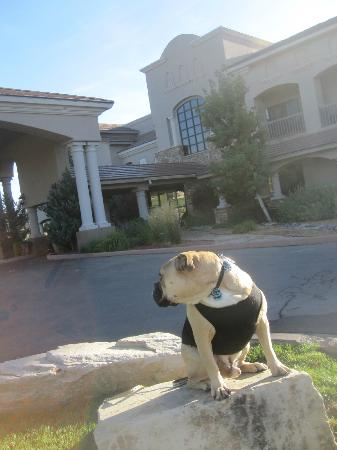 MCM Elegante Lodge & Suites: Travelin' Jack checks out the hotel from the Front Lawn