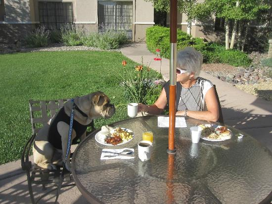 MCM Elegante Lodge & Suites: Travelin' Jack is enjoying his FREE hot breakfast buffet outside on the Veranda