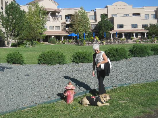 MCM Elegante Lodge & Suites: Talk about Pet Friendly! There's even a fire hydrant on property for the pup-travelers!