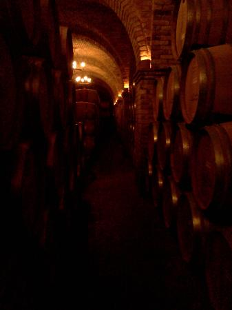Castello di Amorosa: in the cellar