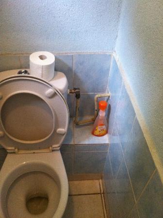 Mas du Cimai: Toilettes trouvées à l'arrivée