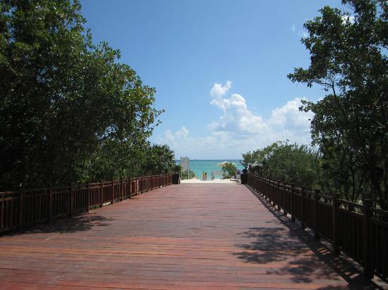 卡曼海灘寶娜芭拉迪莎酒店照片