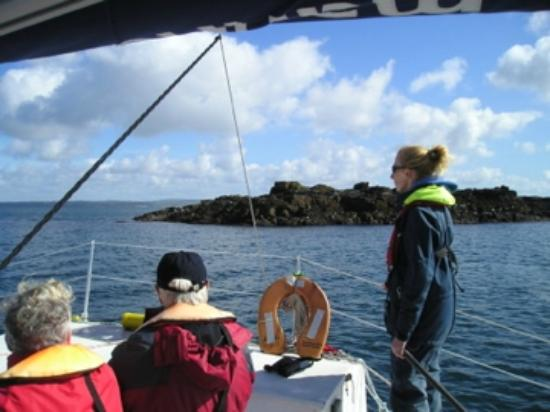 Marine Discovery: Passing St Clement's Island
