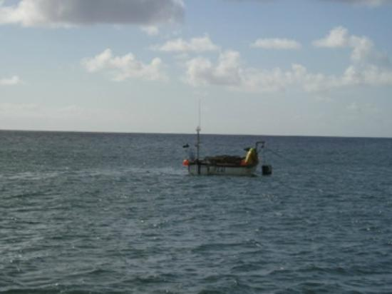 Marine Discovery: Lobster fisherman
