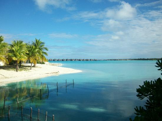 The St. Regis Bora Bora Resort: Motu side of the resort.