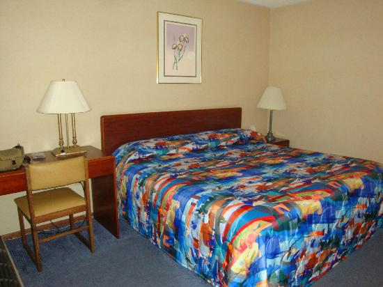 Motel 6 Kingston : Colorful bedspread