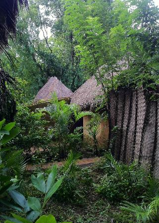 Kumbura Eco Lodge: beautiful design