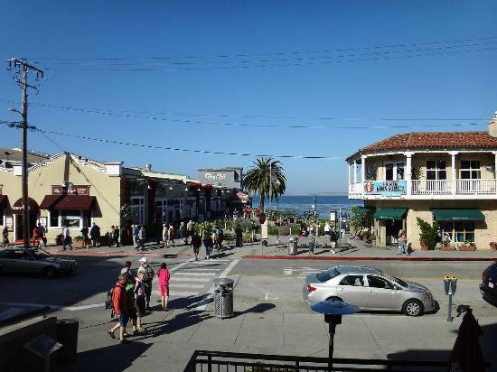row book report  essay on cannery row by john steinbeck short summary