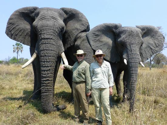 Sanctuary Baines' Camp: The Elephant Experience