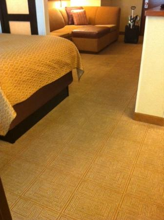 Hyatt Place Busch Gardens: carpet in need of cleaning